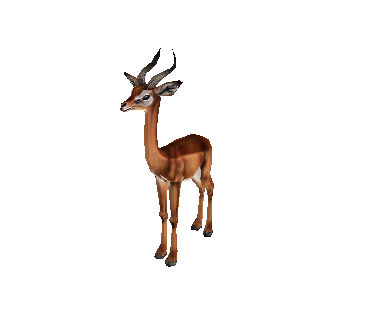 PC / Computer - Zoo Tycoon 2 - Gerenuk Male - The Models