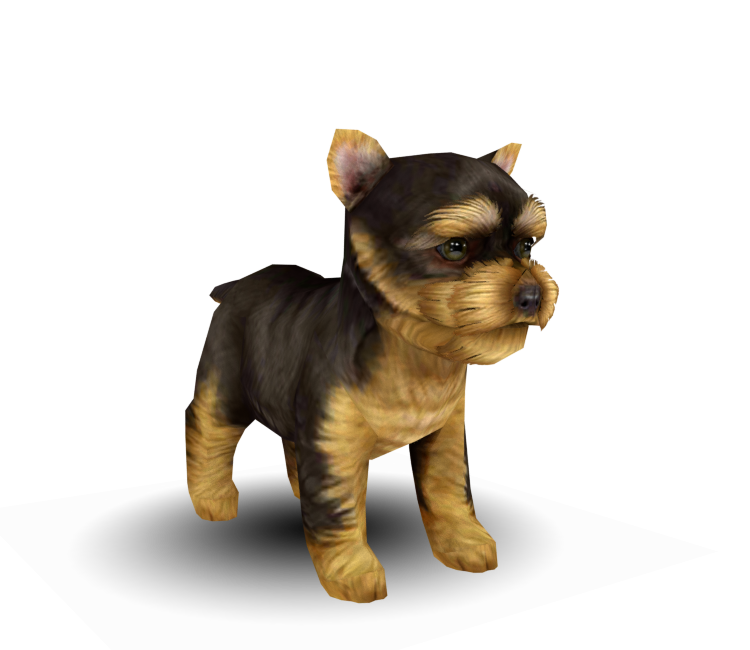 3DS - Nintendogs + Cats - Yorkshire Terrier - The Models ...