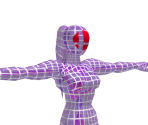 Fighting Wireframe (Female)