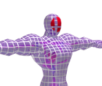 Fighting Wireframe (Male)