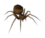 Spider (Large)