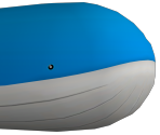 321 - Wailord