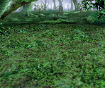 Forest (Mist)