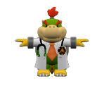 Dr. Bowser Jr.