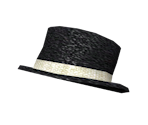 Ringmaster Top Hat
