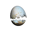 Cracked Egg of Pwnage